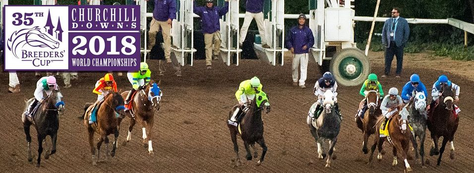 Looking at the betting favorites to cash in at the Breeders' Cup Classic | News Article by HorseRacingBetting.com